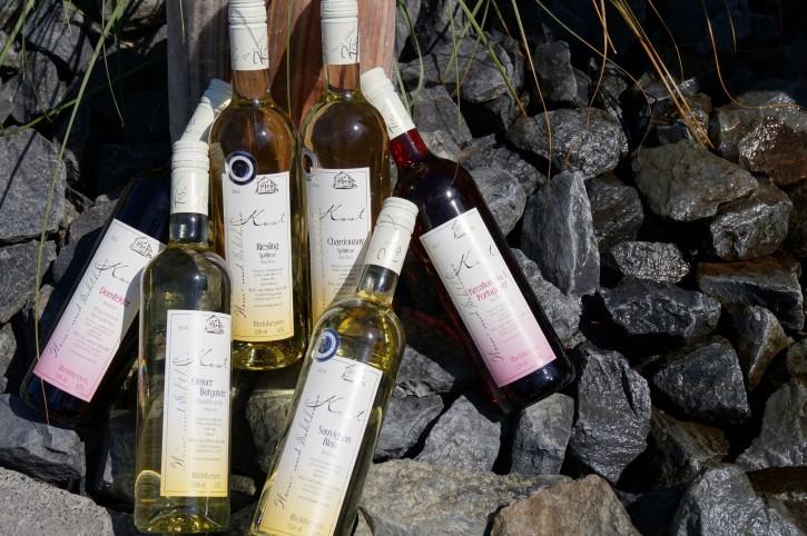 6er Probierpaket Rot- u. Weißwein -trocken- 6 Fl. x 0,75l